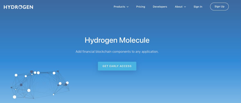 Introducing Hydrogen Molecule