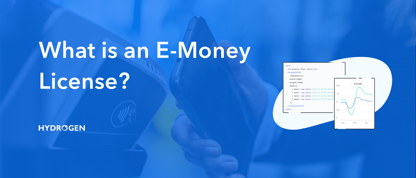What is an E-Money License?